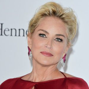 Sharon Stone Biography, Age, Height, Weight, Family, Wiki & More